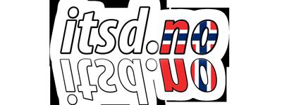 ITS Dworniczak- Projektowanie stron internetowych w Norwegii